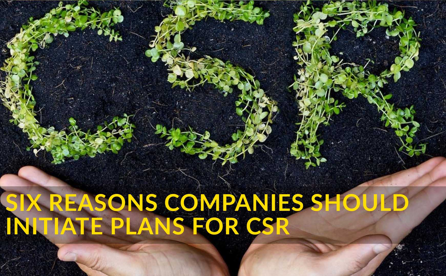 Six Reasons Companies Should Initiate Plans for CSR